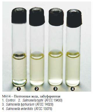 пептонная вода инструкция по применению - фото 2